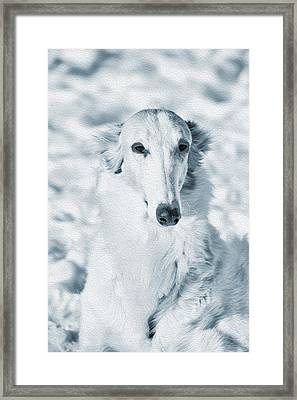 Borzoi Russian Hound Portrait Framed Print by Christian Lagereek