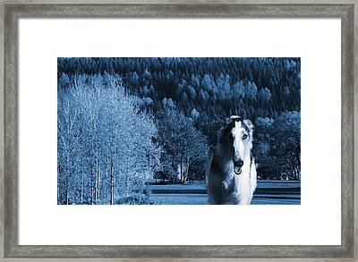 Borzoi Wolf Hound Emerging From Dark Blue Forest Framed Print by Christian Lagereek