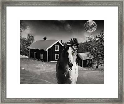 Borzoi Wolf Hound On A Midnight Hunt Framed Print by Christian Lagereek