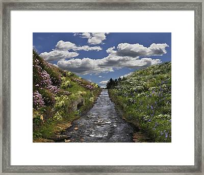 Boscastle Dream Framed Print
