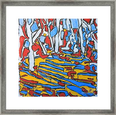 Bosque Trail Framed Print by Ray  Petersen