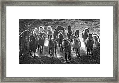 Boss Hoss Framed Print by Joan Davis