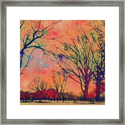 Boston Commons In Tangerine - Square Framed Print