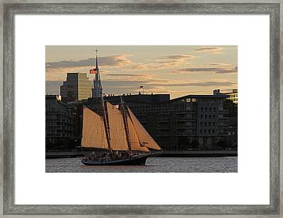 Boston Harbor Sailing On The Schooner Liberty Star Framed Print