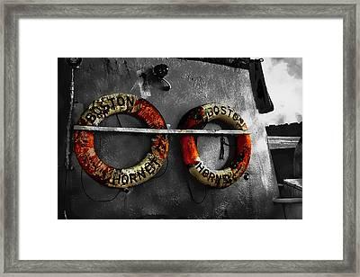 Boston Hornet Framed Print
