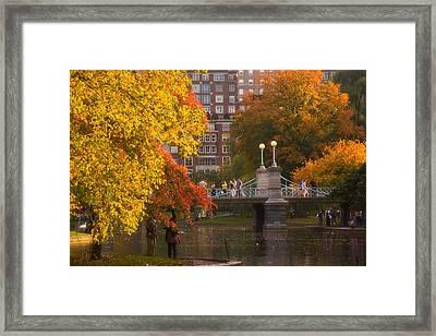 Boston Public Garden Lagoon Bridge Framed Print