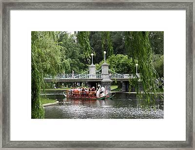 Boston Swan Boat Framed Print
