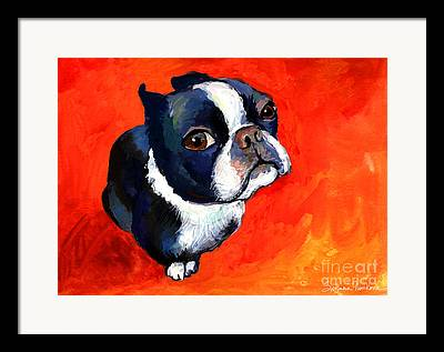 Toy Breeds Framed Prints