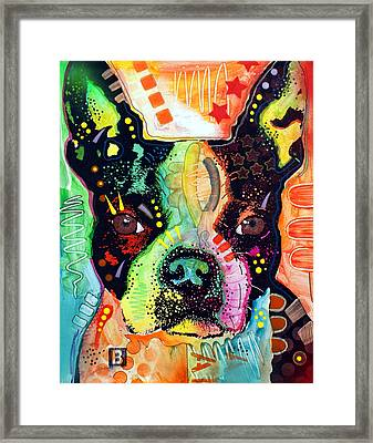 Boston Terrier IIi Framed Print by Dean Russo