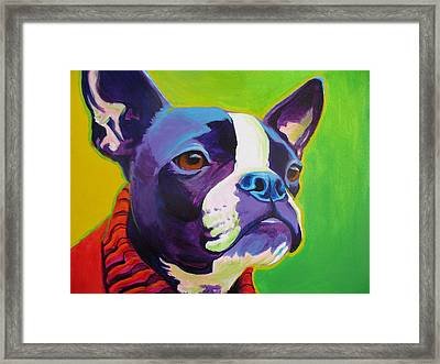 Boston Terrier - Ridley Framed Print by Alicia VanNoy Call
