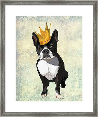 Boston Terrier With A Crown Framed Print by Kelly McLaughlan