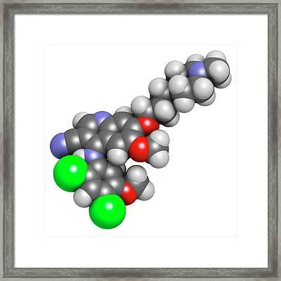 Bosutinib Leukemia Drug Molecule Framed Print by Molekuul