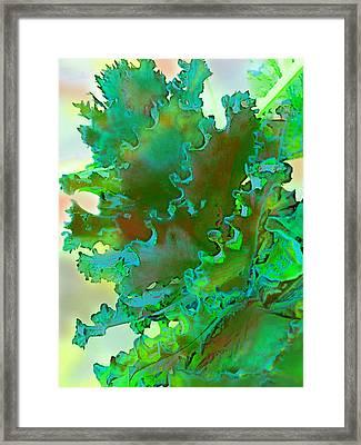 Botanica Fantastica 3 Framed Print