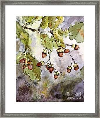 Botanical Acorns And Oak Leaves Framed Print