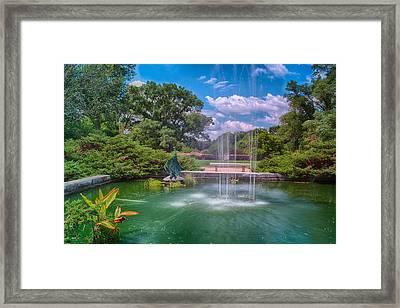 Botanical Garden Framed Print by Jonah  Anderson