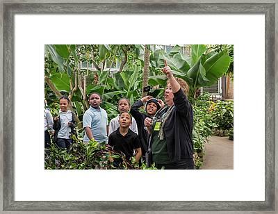 Botanical Greenhouse School Trip Framed Print by Jim West
