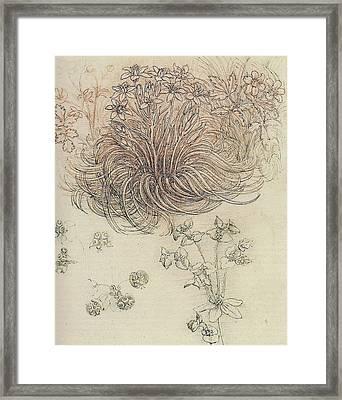 Botanical Study Framed Print