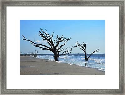 Botany Bay Beach Framed Print by Linda Freed