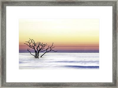Botany Bay Sunrise Framed Print by Kathy Ponce