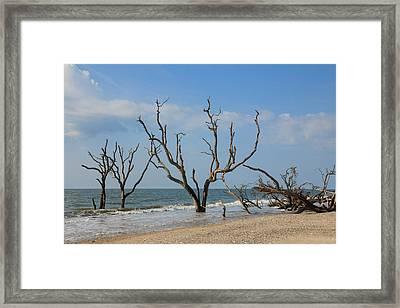 Botany Beach Framed Print