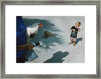 Botswana 1994 Framed Print