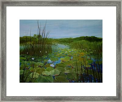 Botswana Lagoon Framed Print
