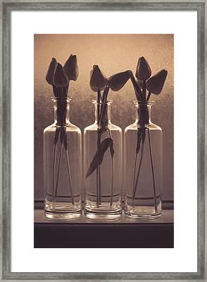 Bottled Love Full - North  Framed Print