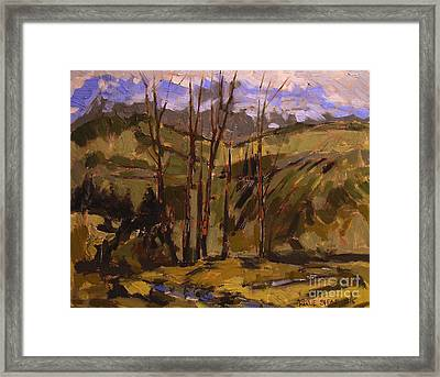 Bottom Of The Draw Maconaquah Park Framed Print