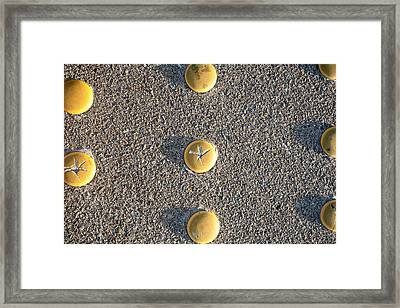Bott's Dots Framed Print by Peter Tellone