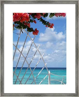 Bougainvillea Beach Framed Print by Randall Weidner