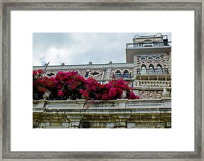 Bougainvillea On Balcony In Lisbon  Framed Print
