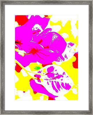 Bougie Framed Print