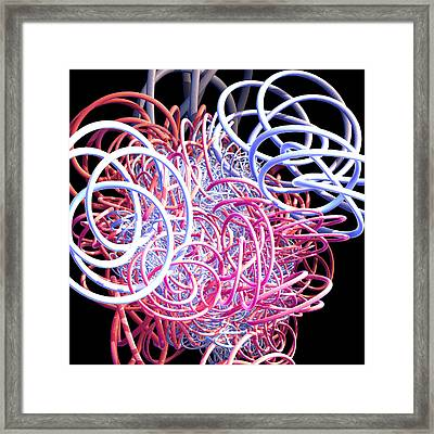 Bouncing At The Old Kings Arms Framed Print by Brainwave Pictures