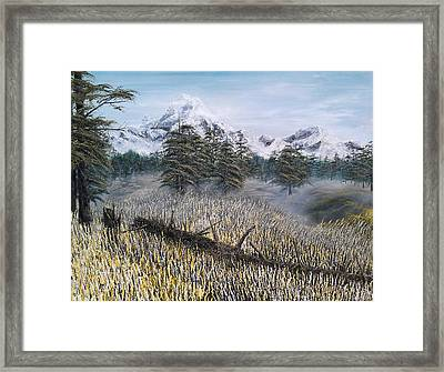 Boundless Framed Print by Pheonix Creations