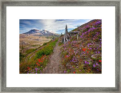 Boundry Trail Framed Print by Darren  White