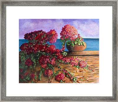Bountiful Bougainvillea Framed Print by Laurie Morgan