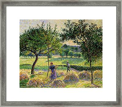Bountiful Harvest, 1893 Framed Print by Camille Pissarro
