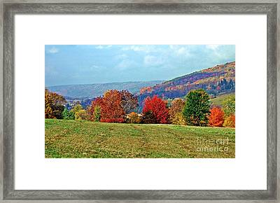 Bounty Of The Hills Framed Print