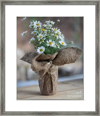 Bouquet Of Chamomile  Framed Print by Petko Pemaro