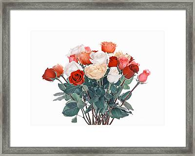 Bouquet Of Roses Framed Print by Elena Elisseeva