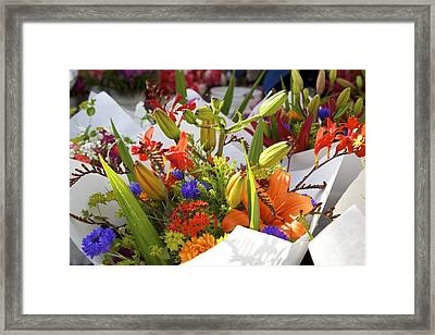 Bouquets Of Color Framed Print by Terry Horstman