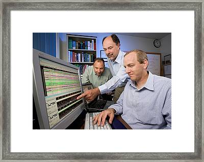 Bovine Prion Disease Genetics Research Framed Print by Stephen Ausmus/us Department Of Agriculture