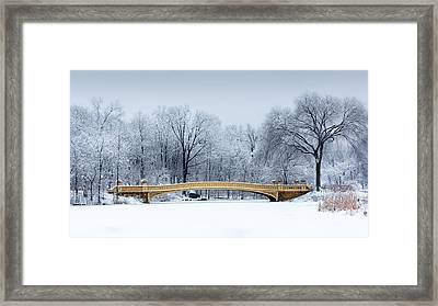 Bow Bridge In Central Park Nyc Framed Print