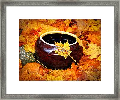 Framed Print featuring the photograph Bowl And Leaves by Rodney Lee Williams