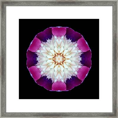 Bowl Of Beauty Peony II Flower Mandala Framed Print
