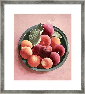Bowl Of Fruit Framed Print by Tomar Levine