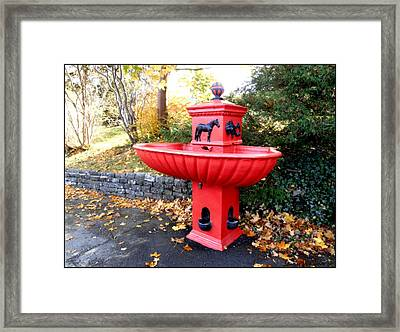 Bowring Park Horse Trough  Framed Print