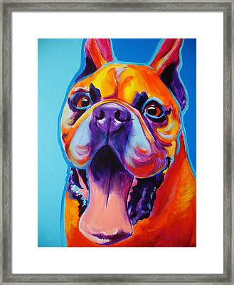 Boxer - Tyson Framed Print by Alicia VanNoy Call