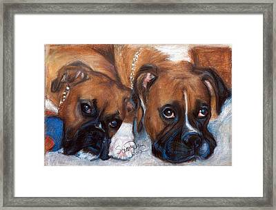 Boxer Buddies Framed Print by Sciandra
