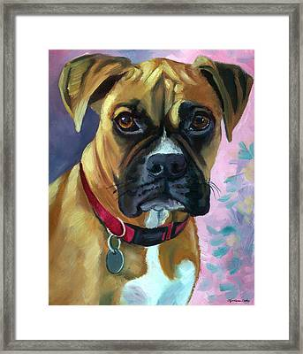 Boxer Dog Portrait Framed Print by Lyn Cook